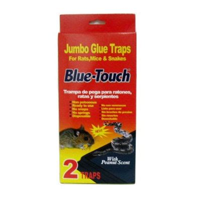 blue touch jumbo glue traps 2 packs $6.99 / for the home