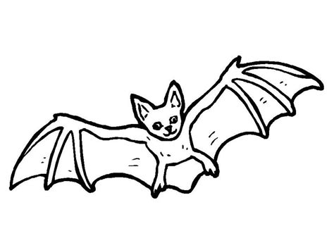 Bat Colouring Page  sketch template