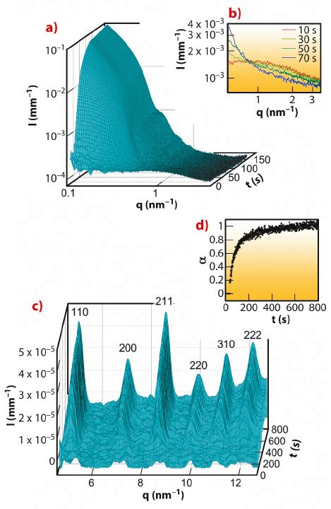 sarcomeric pattern formation by actin cluster coalescence fast nucleation and growth of nanocrystals of a porous