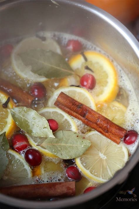 simmer pot recipes christmas potpourri simmer pot natural ᗑ air air