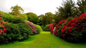 Beautiful Images Of Flower Gardens Beautiful Nature Flowers Garden Images Wallpapers Whatsapp