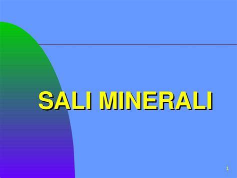 sali minerali alimenti sali minerali dispense