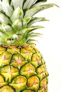 what color is a pineapple yellow pineapple colors photo 34691623 fanpop
