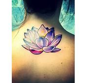73 Lotus Flower Tattoos Designs  Mens Craze FeedPuzzle
