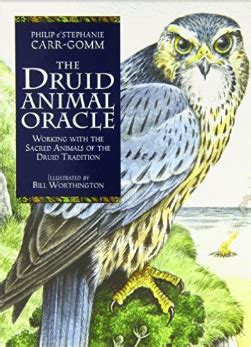 libro the druid animal oracle book review the druid animal oracle