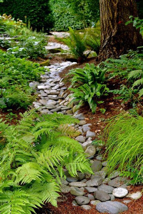 gardening rocks gardening rocks archives page 4 of 10 gardening dreams