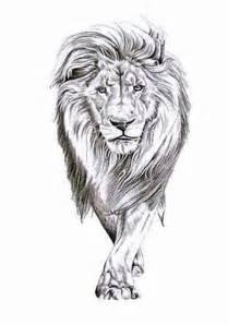 best 25 lion tattoo ideas on pinterest leo lion tattoos