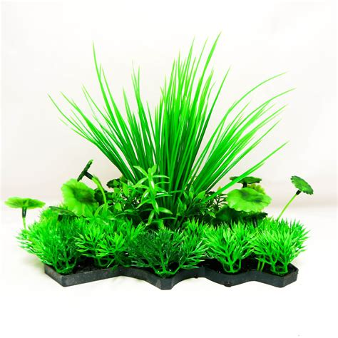 Pflanze Kaufen 216 by Aquarium Plastik Pflanzen Dekoration Ornamente Imitation