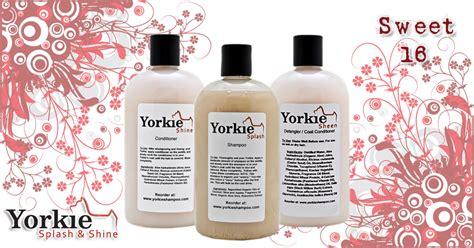 yorkie grooming products sweet 16 yorkie grooming kit