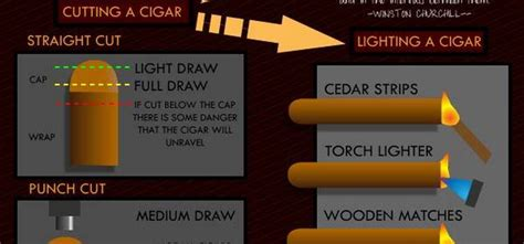 how to choose a cigars for beginners how to choose a cigar infographic