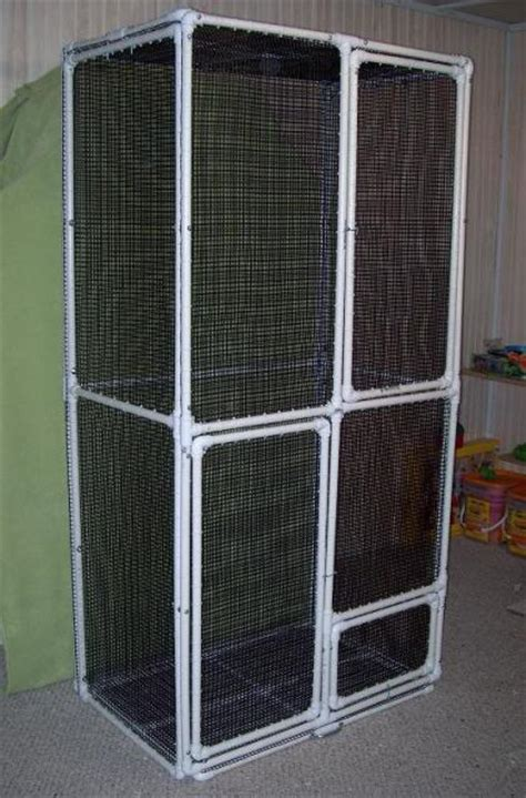 Kandang Kucing Well Cage tutorial how to build a pvc cage glidercentral