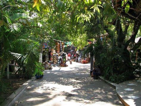 cardenas market dc shopping guide for puerto vallarta travel guide on