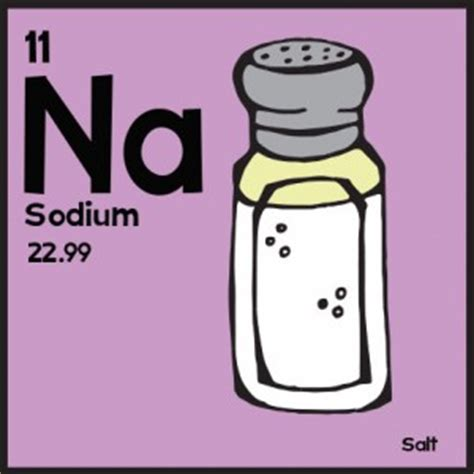 sodium the classic periodic table illustrated angry squirrel studio