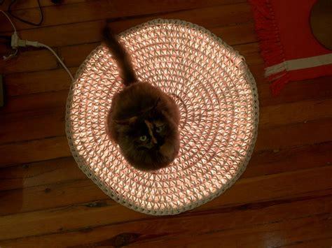 Rope Light Crochet Rug by Pin By Sue Nally Carlsson On Crochet