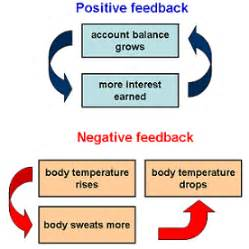 positive feedback loop | the political climate