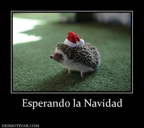 imagenes graciosas para la navidad desmotivaciones esperando la navidad