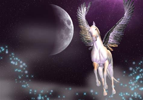 imagenes de pegasos y unicornios reales imagenes de unicornios y pegasos hairstylegalleries com