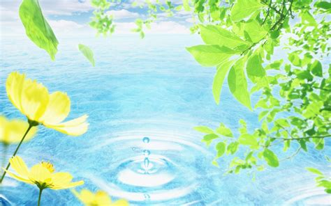 art design nature wallpaper hits background วอลเปเปอร น าร ก ธรรมชาต