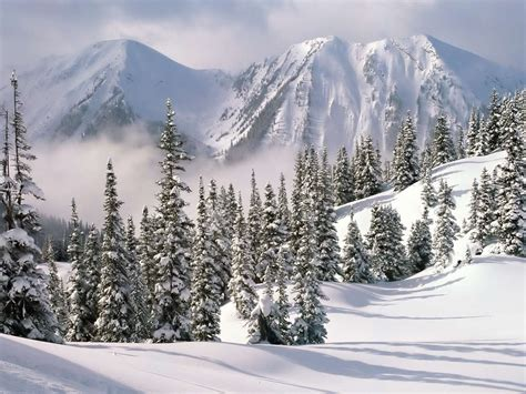 wallpaper desktop nature winter nature desktop wallpaper winter wallpaper express is all