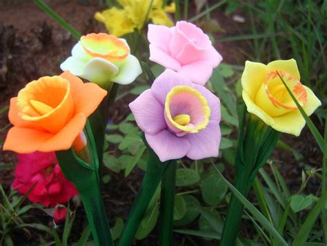 what color is daffodil flower homes daffodils flowers