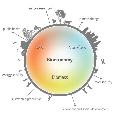 bioeconomy in the spanish public budget for 2016