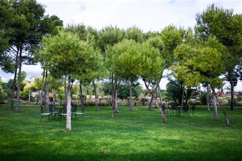 maravillosa  la torreta de bayona #1: 2014-Finca-Torreta-de-Bayona-3.jpg