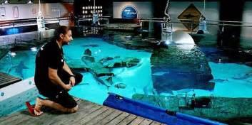 aquarium le seaquarium le grau du roi