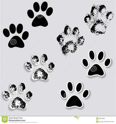 les pieds animaux de voie de patte de chat impriment des
