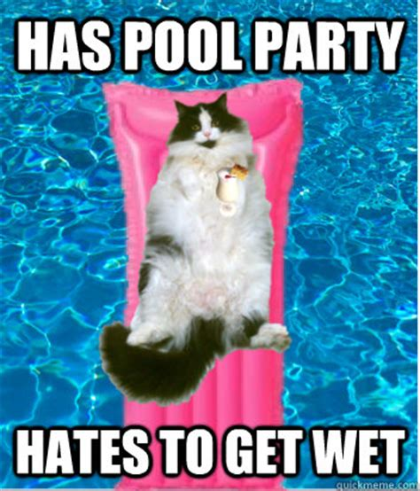 Meme Pool - pool party meme memes