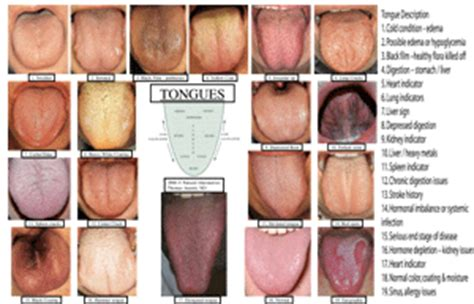tongue tips by zoebess entry