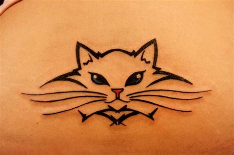 tattoo fixers cat face best 25 cat face tattoos ideas on pinterest small face
