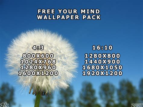 wallpaper free your mind free your mind wallpaper pack by dmkaas on deviantart