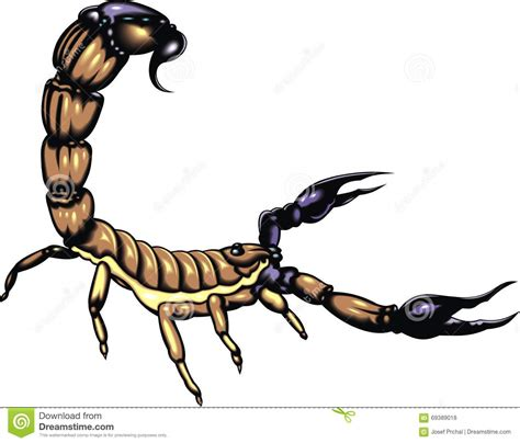 Snhu Mba Passing Score by Big Scorpio Animal Stock Vector Illustration Of Element