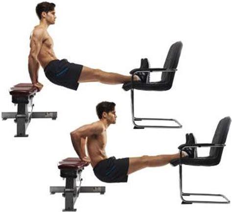 Triceps Bench by 10 Exerc 237 Cios De Fundos Musculacao Net