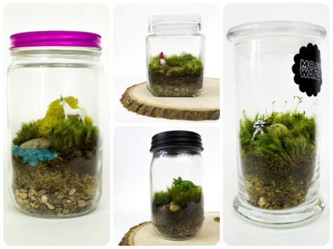 Office Plants That Don T Need Sunlight by Diy Moss Terrarium