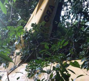 civil aviation investigators to probe roraima airways