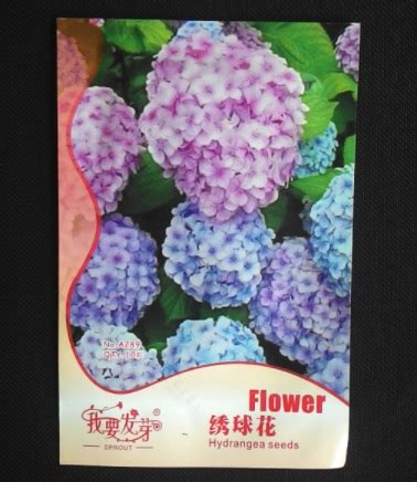Jual Bibit Hydrangea benih retail asia hydrangea hortensia mixed 20 biji