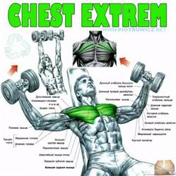 chest exercises with dumbbells without bench exercise for chest with dumbbells
