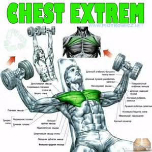 Chest extrem fly dumbbell exercise hardcore workout upper low