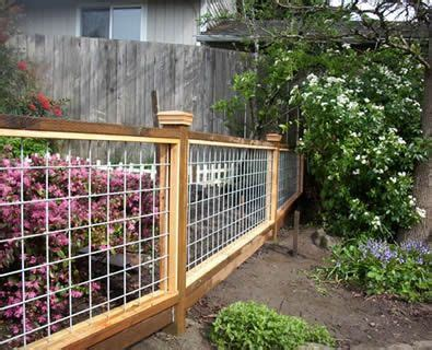 white cattle panel fence