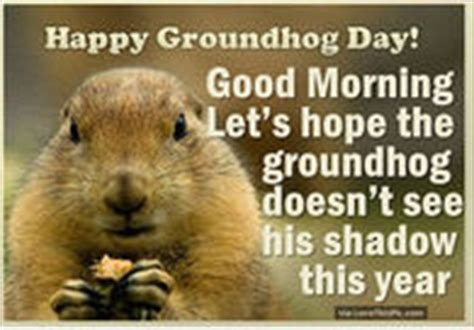 groundhog day morning groundhog phil lied pictures photos and images for