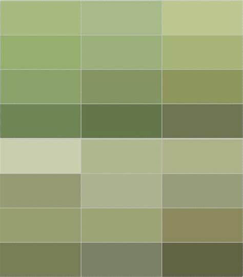 popular shades of green 25 best ideas about olive green walls on pinterest