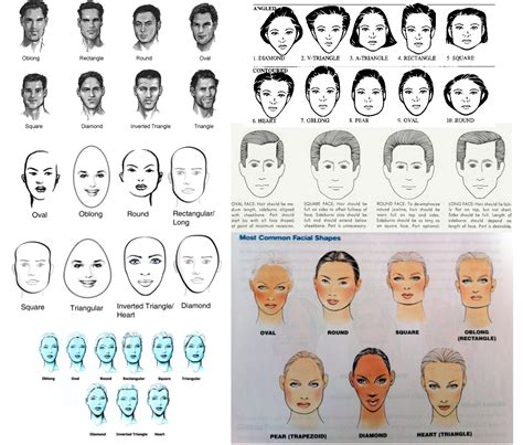 exles of face shapes aryan anthropology how many face shapes are there
