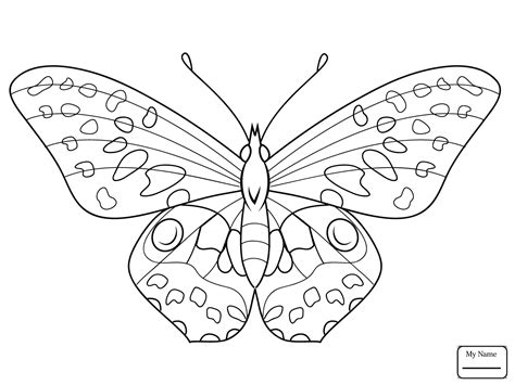 types of butterflies coloring pages 90 click the blue morpho butterfly coloring pages