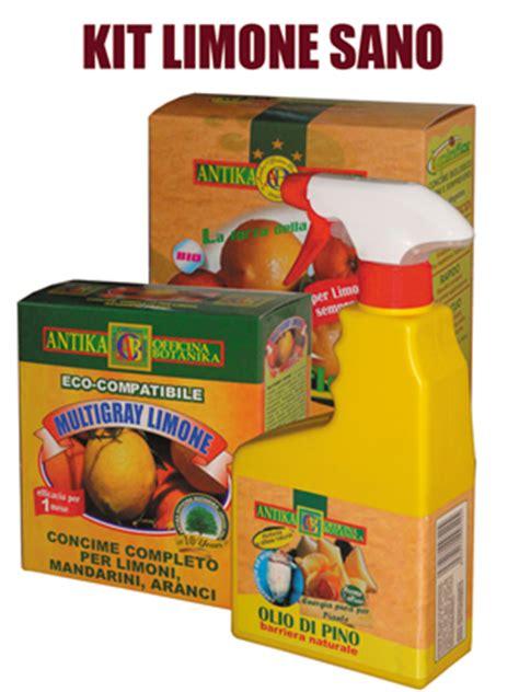 terriccio per limoni in vaso kit biologico per la coltivazione di limoni in vaso ed
