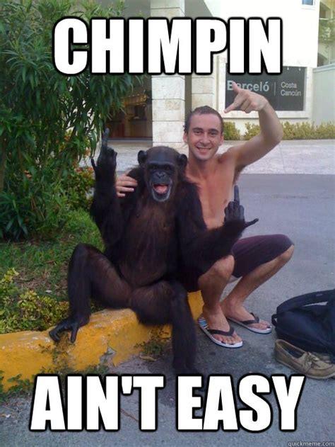 Funny Gorilla Meme - makeup monkey meme makeup daily