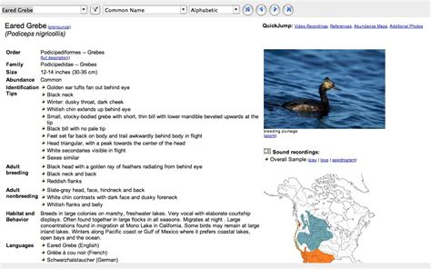 thayer birding software bird of canada v3 9 windows aprijer