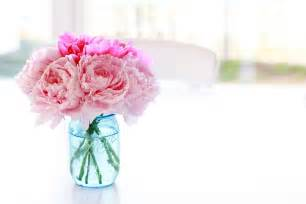 Flowers Vase Photos Peony Bouquet Wallpaper