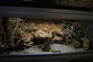 faire decoration terrarium visuel 8
