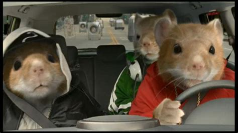Kia Gerbils Kia Soul This Or That Stills Photo Gallery